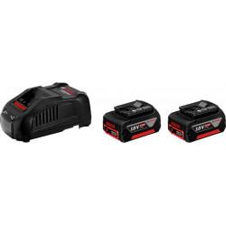 Набор акумуляторов Bosch 18 В 5,0 Ач + ЗП (1.600.A00.B8J)