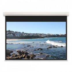 Моторизированный экран Projecta Elpro Concept 173x300 см, HC